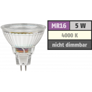 LED-Strahler McShine